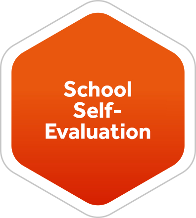 School Self-Evaluation Form