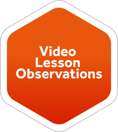 Video Lesson Observations