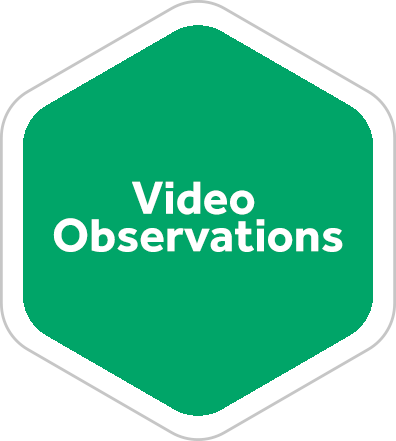 Video Observations