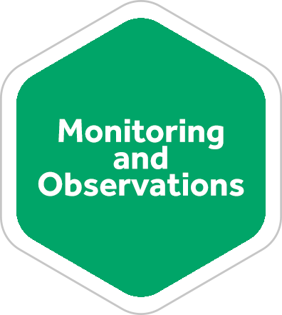 Monitoring and Observations